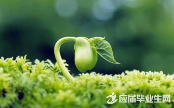 有关植物的歇后语130句