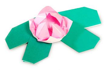 睡莲折纸制作教程
